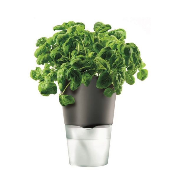 Eva Solo Herb pot with Reservoir 11 cm black